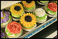 picfancycupcakes