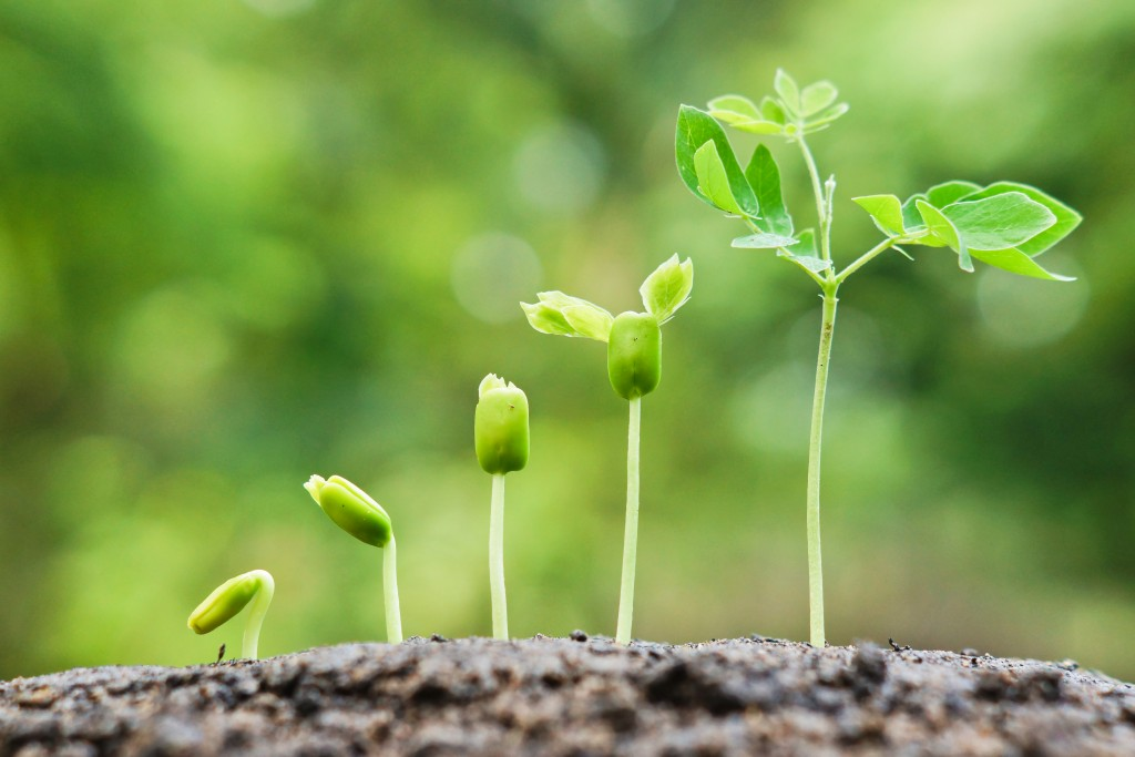 3PL Strategy: How to grow and nurture your customers
