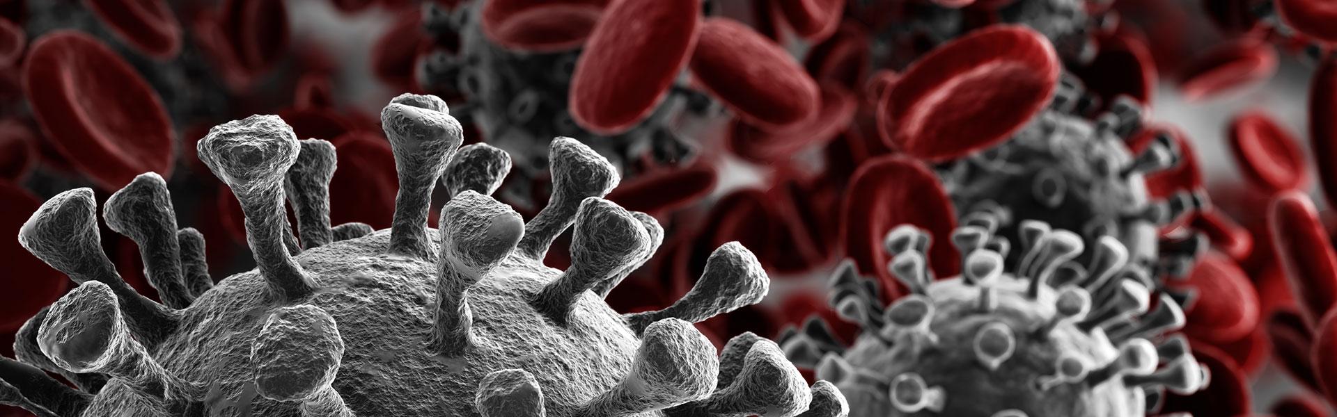 The Coronavirus is Disrupting Global Supply Chains