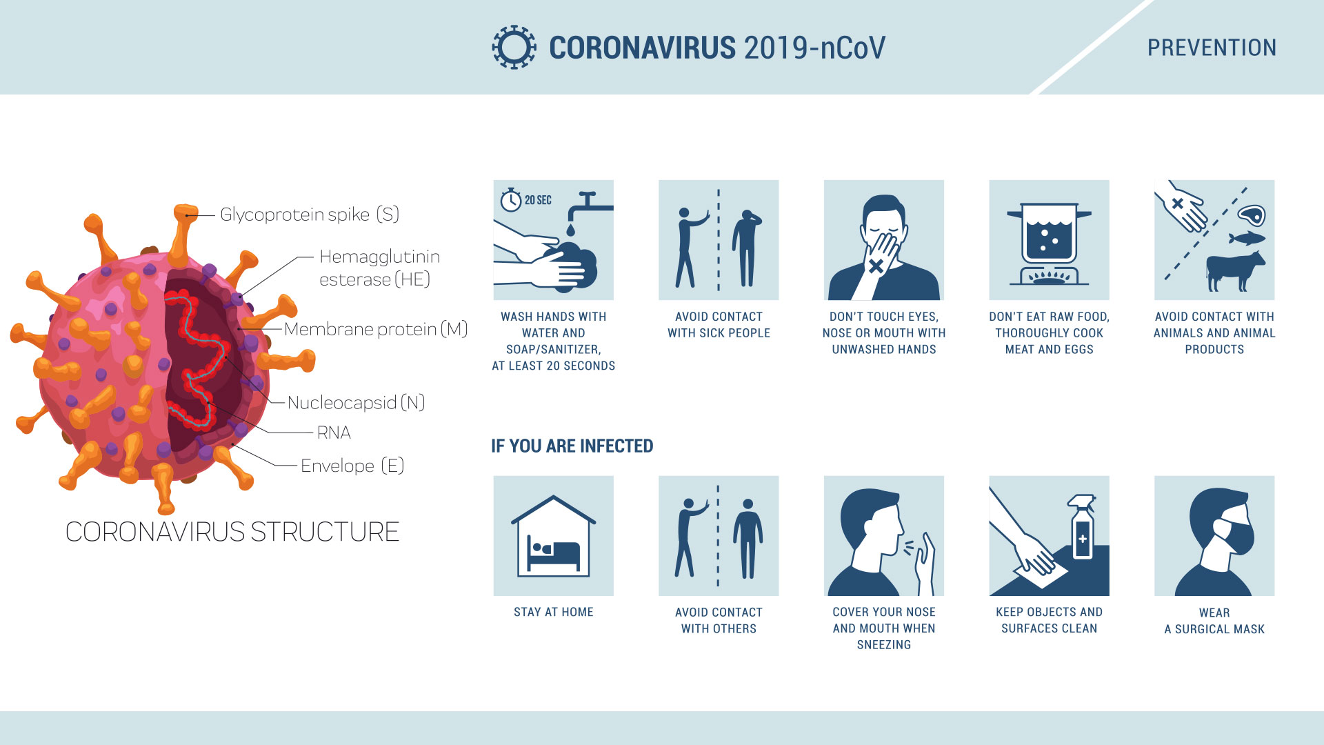 Coronavirus Covid-19 and Impact on Business and Supply Chains